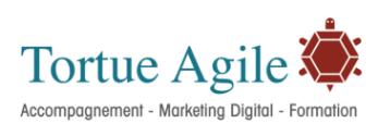 Tortue Agile Logo